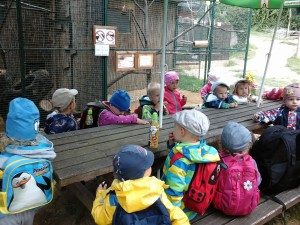 Zoo Zájezd